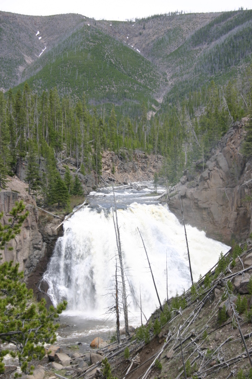 Yellowstone_lower_falls